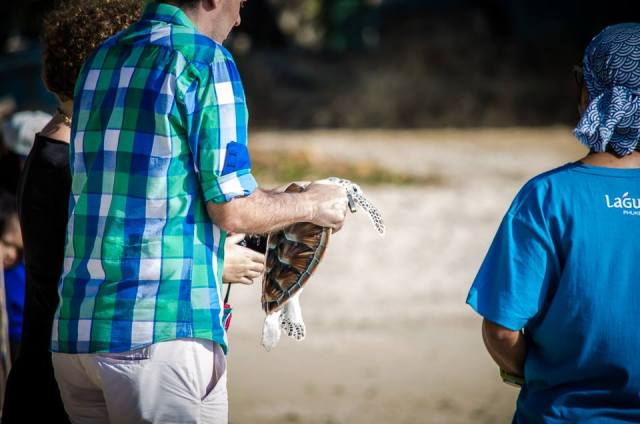 09. Turtle Release