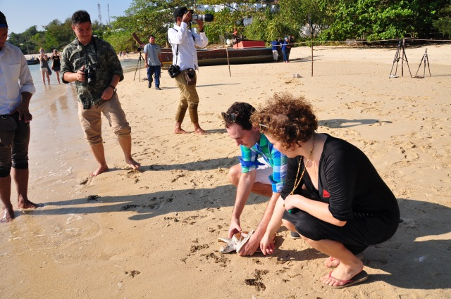 11. Turtle Release